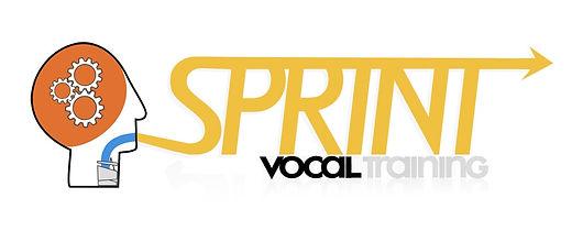 Logo SVT II-min.jpg