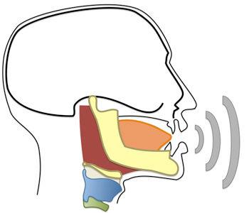 imagen-10-ciencia-vocal.jpg