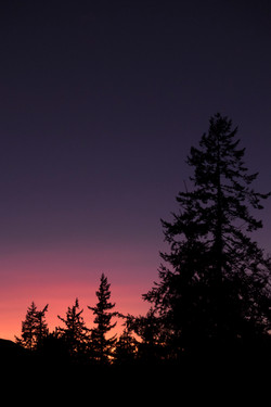 Bellingham sunsets