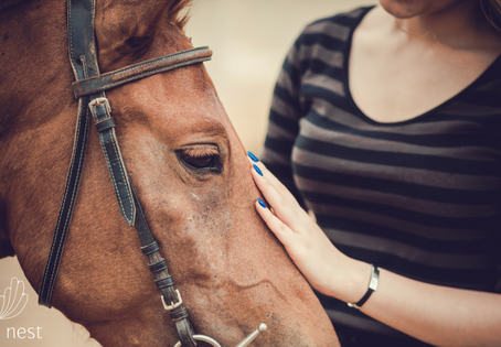 Common causes of hand and wrist pain from horse riding