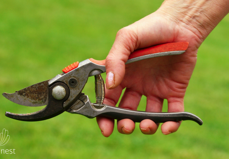 8 tips to prevent hand and wrist pain when gardening