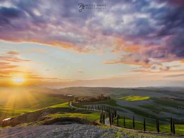 Agruturismo Baccoleno - Siena - Matteo Andrei Photography