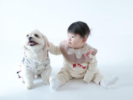 ペット撮影 湘南ハウススタジオ ベイビーズブレス