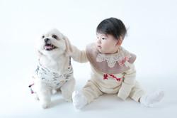 湘南藤沢のペット撮影 | 写真スタジオ