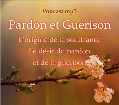 2020-2 Pardon et Guérison.jpg