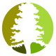 Sequoia Logo - Transparent.png