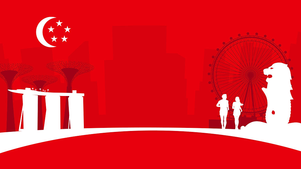 SG56 wix Cover pic -01.jpg