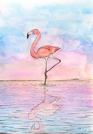 flamingoB005_edited.jpg