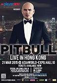 Pitbull-Flyer.jpg