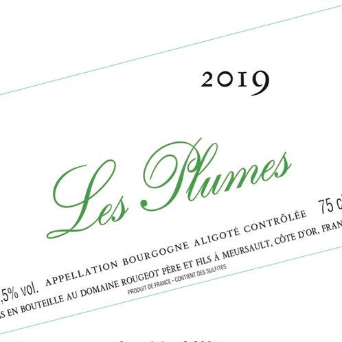 """Aligoté """"Les Plumes"""" Sans sulfite ajouté 2019"""