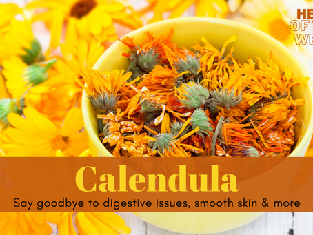 Herb of the Week - Calendula