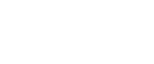mini-logo white.png