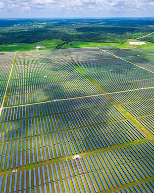 Green Solar Farm.jpg