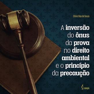 Pimenta_Cultural-inversao-onus-capa.jpg