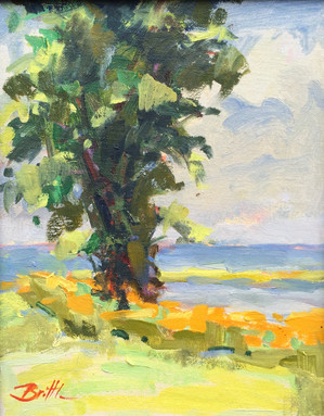 Rivah Tree 9