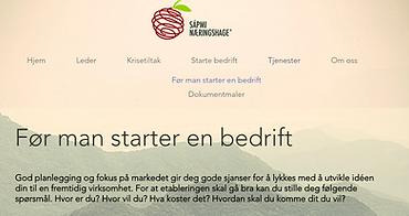 før_man_starter_bedrift.PNG