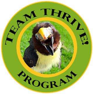 Team-Thrive!_web.jpg