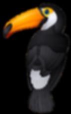 toucan 2 png.png