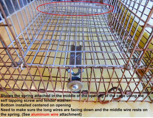BUILDING A RAT TRAP slides-10.jpg