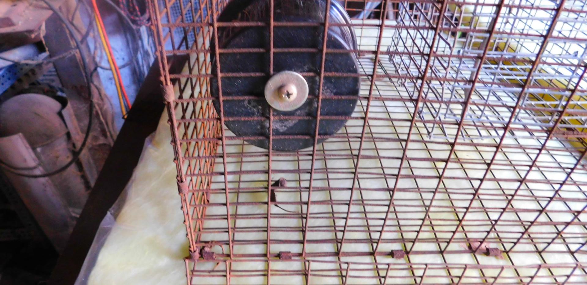 BUILDING A RAT TRAP slides-12.jpg