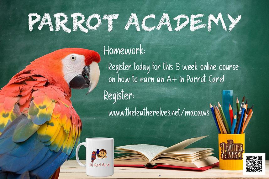 Parrot Academy Workshops.jpg