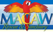 macaw-rescue.png