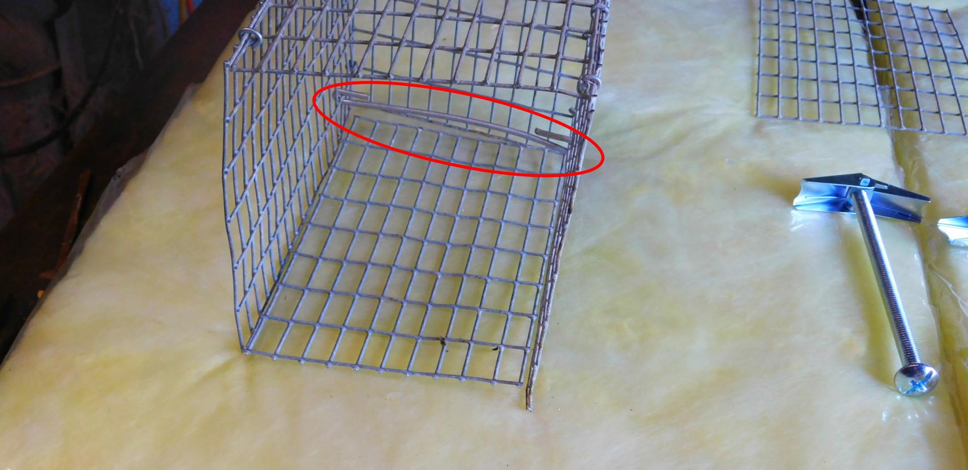 BUILDING A RAT TRAP slides-6.jpg