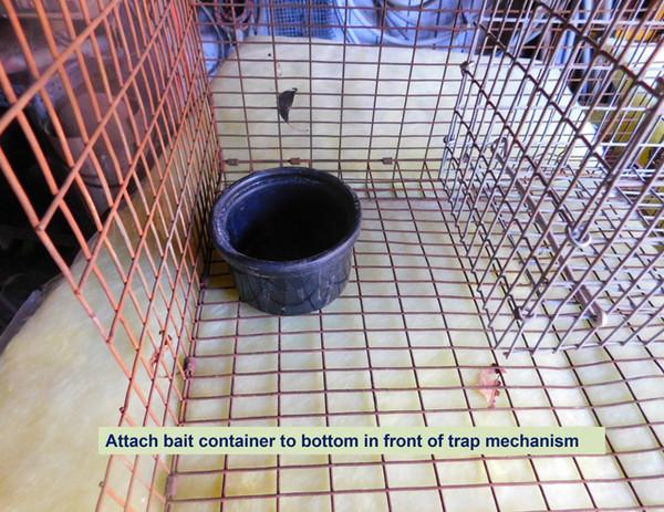 BUILDING A RAT TRAP slides-13.jpg