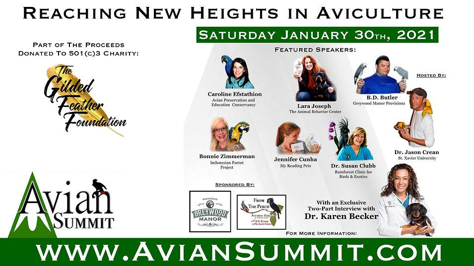 Avian Summit card.jpg