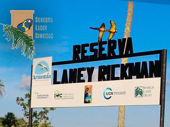 Laney-Rickman-Memorial Fund 3.jpg