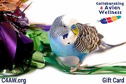 C4AW Gift Card.jpg