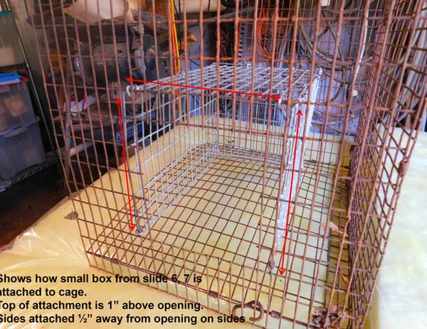 BUILDING A RAT TRAP slides-8.jpg