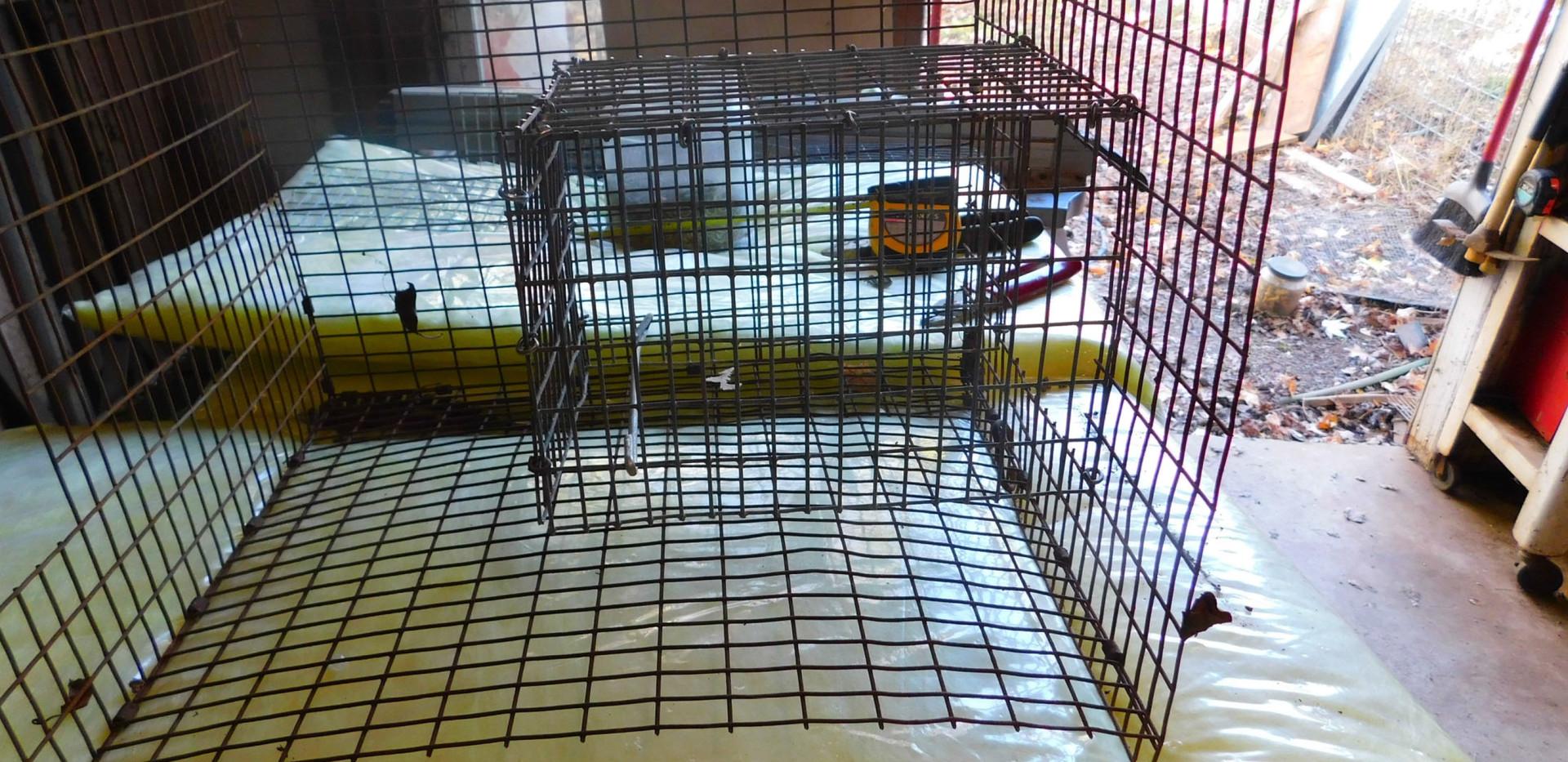 BUILDING A RAT TRAP slides-9.jpg
