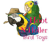 HootnHollerBirdToys.jpg