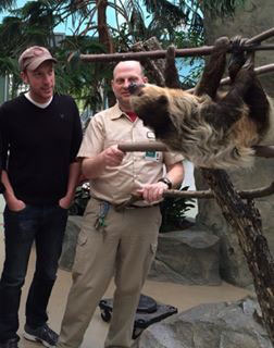 Sloth_Brookfield_Zoo