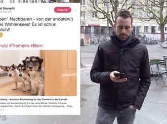 Tierheim Eymatt kommt nicht vom Fleck | Telebärn, 07.02.2019