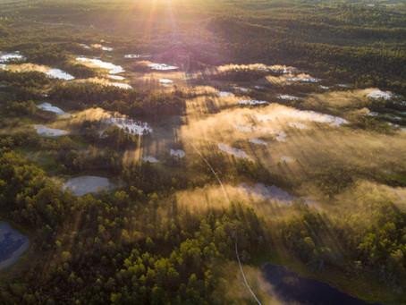 10 Reasons Why You Should Visit Estonia This Year
