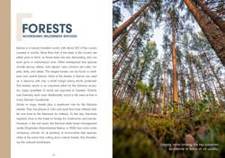Estonia Travel Guide_Seite_034
