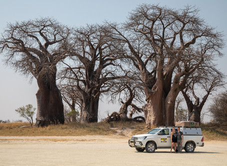 7 Once-In-A-Lifetime Adventures for your Botswana Roadtrip