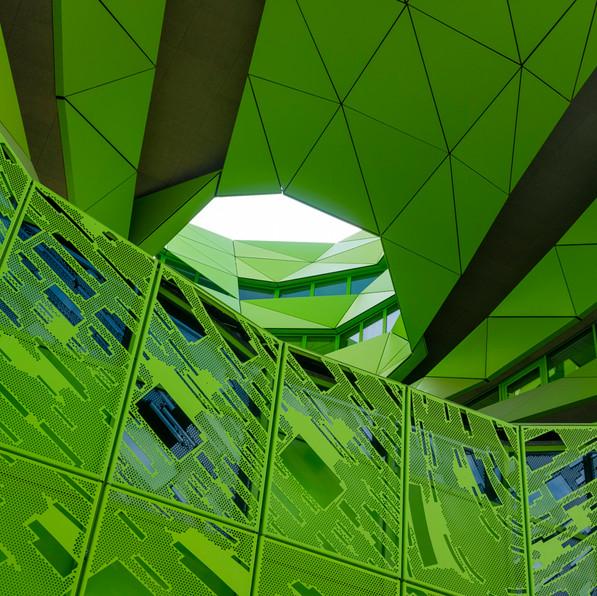 Le cub vert