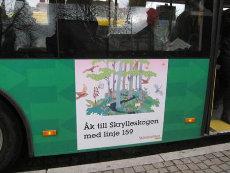 Ta Naturbussen till Skrylleloppet