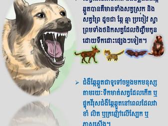 Rabies posters