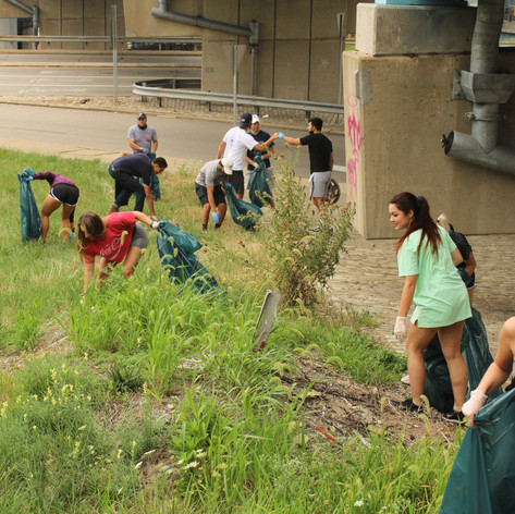 Underpass Cleanup
