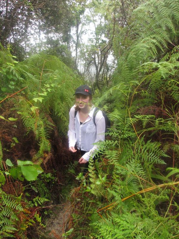 ISLA Academy Students Hike Mt. Isabel de Torres, Prepare to Climb Pico Duarte