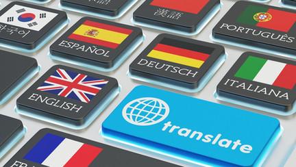 the-amazing-wordpress-multilingual-plugi
