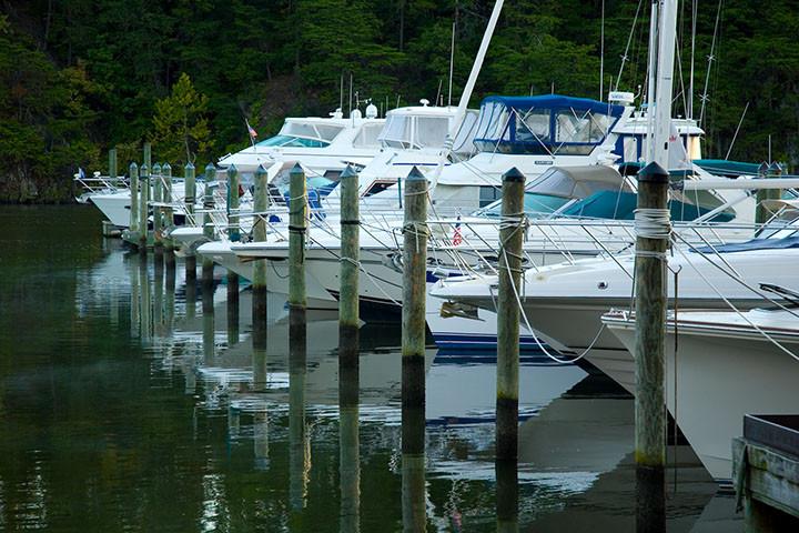 Will's Marina Pics 022.jpg