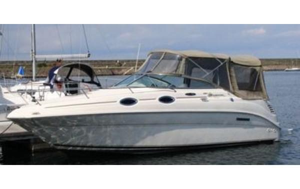 motorboot-motorboot-sea-ray-411508-sea-r