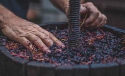 Italy Wine 2
