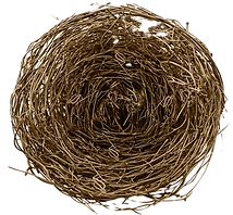 1717274-nest-small-nest-mow-nest-materia