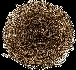 1717274-nest-small-nest-mow-nest-materia